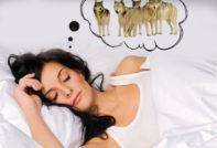 К чему снятся волки во сне женщине