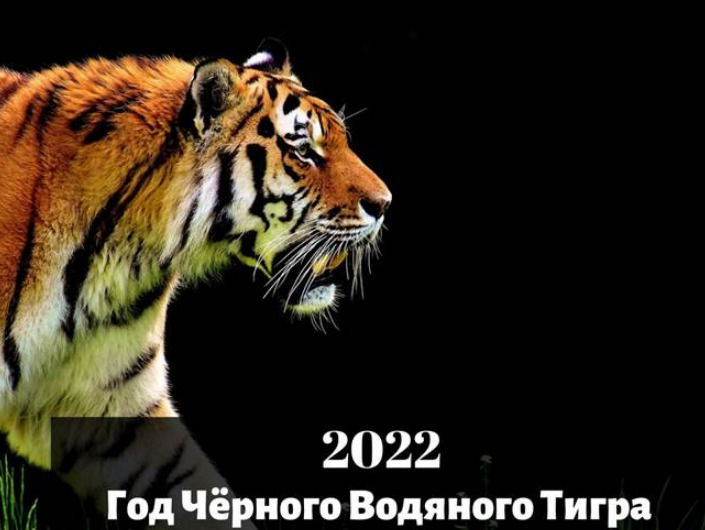 Гороскоп на 2022 год