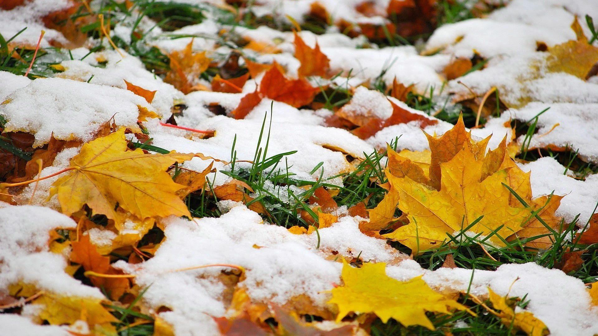 примета зимы